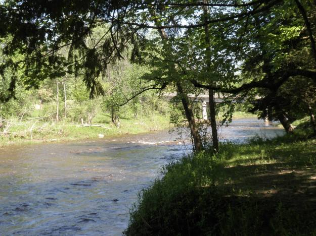 Rifle River 1